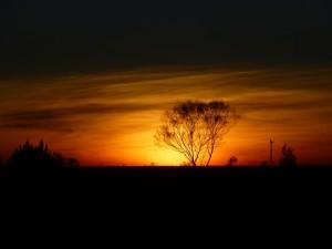 Koora_sunset