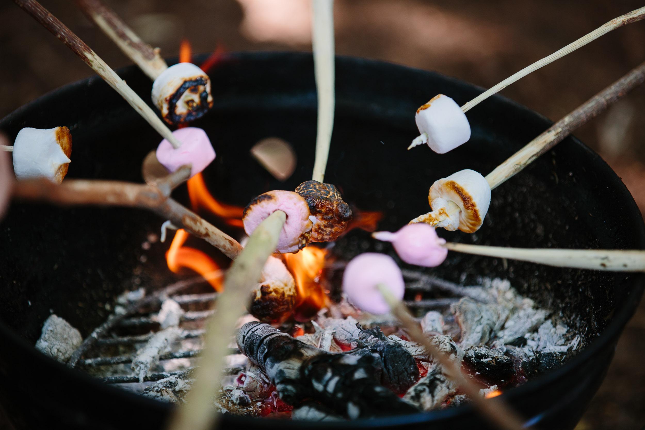 Campfire Conversations – Episode #01